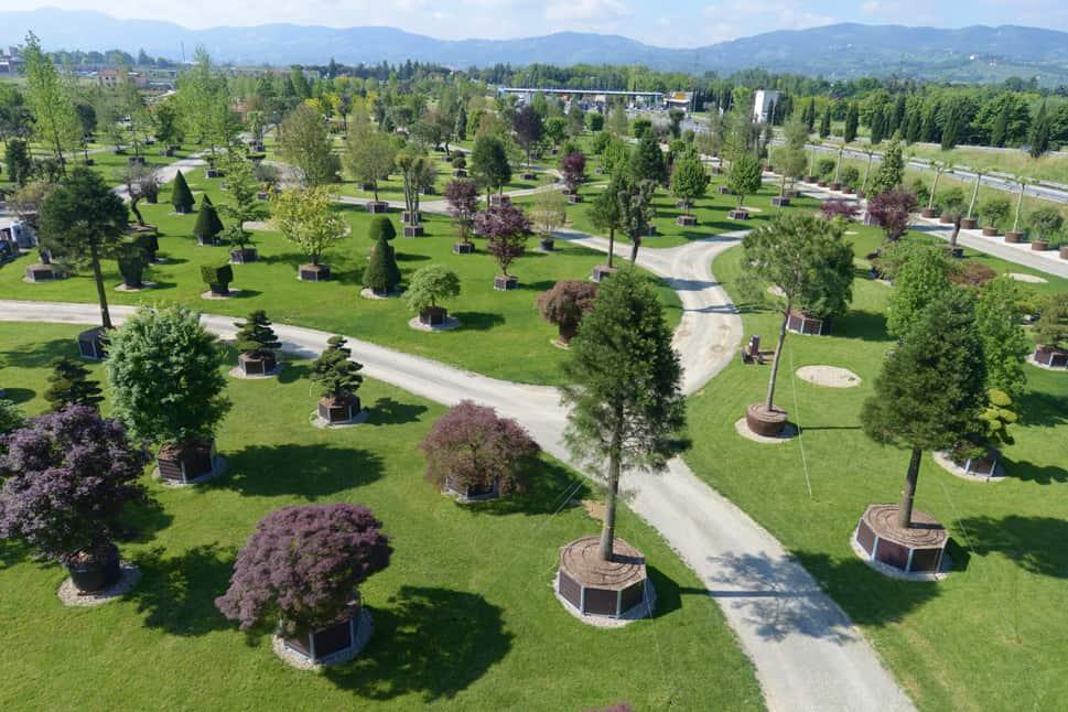 Pistoia nursery park inauguration for Vivai a pistoia