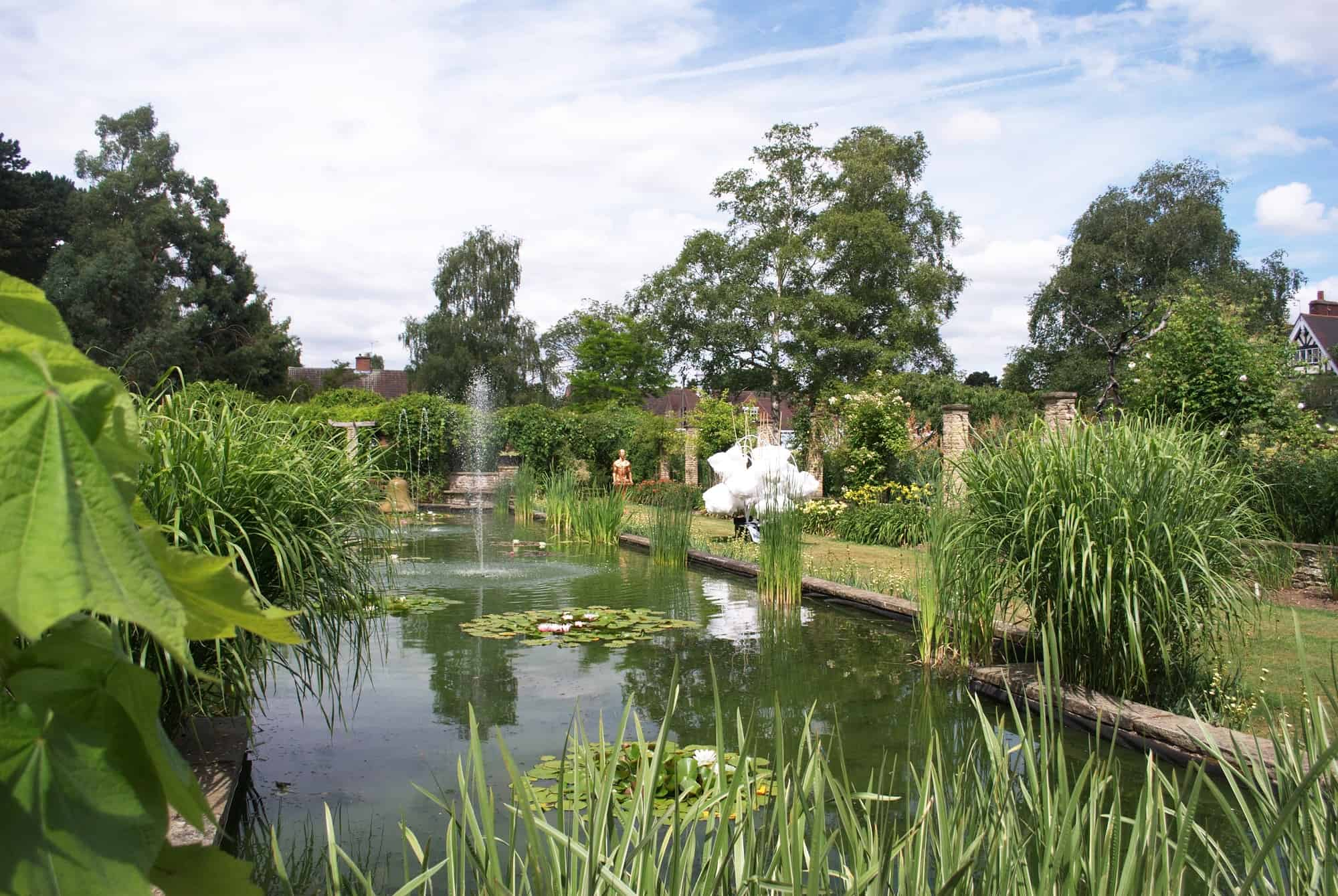 Gardeners question time coming to leicester botanic garden for Garden pond questions
