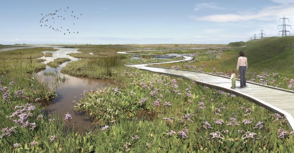 little river wetland project great marsh essay