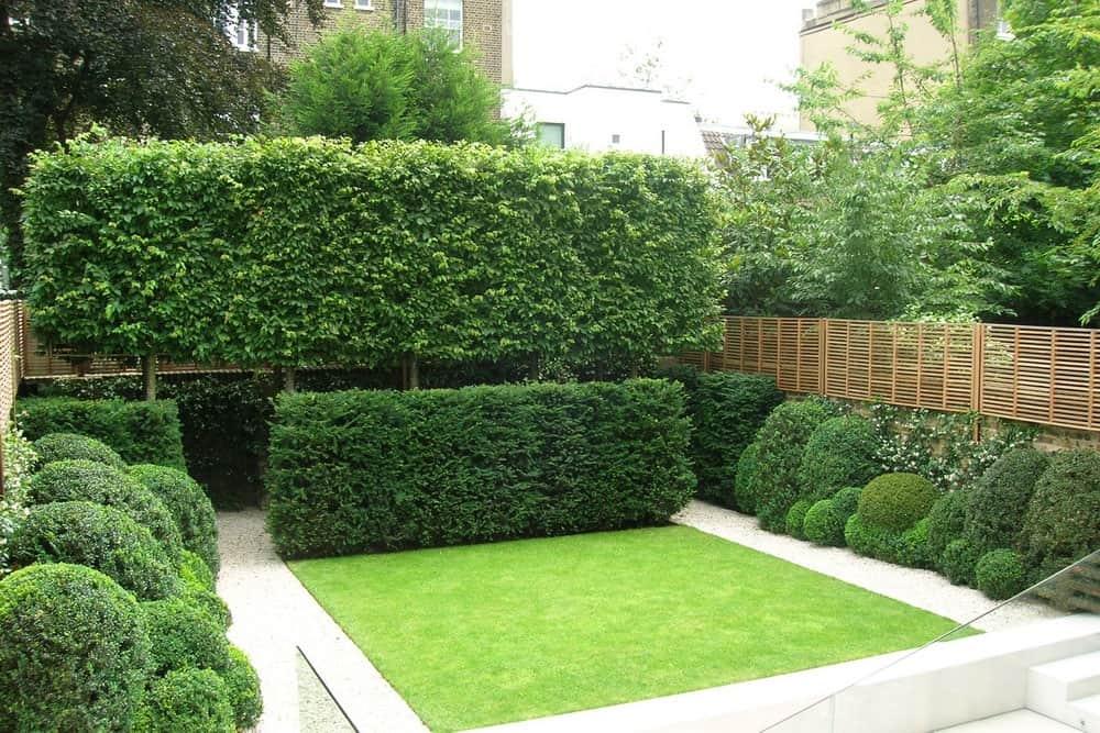 The telegraph announced del buono gazerwitz as its garden for Chelsea garden designs