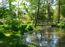 trent-country-park-japanese-garden1