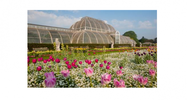 Our Orchid Festival In February Is A Great Way To Escape The Winter Blues,  Into A World Of All Things Bright, Beautiful, And Of Course Tropical, ...
