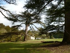 Stanmer Park-Brighton