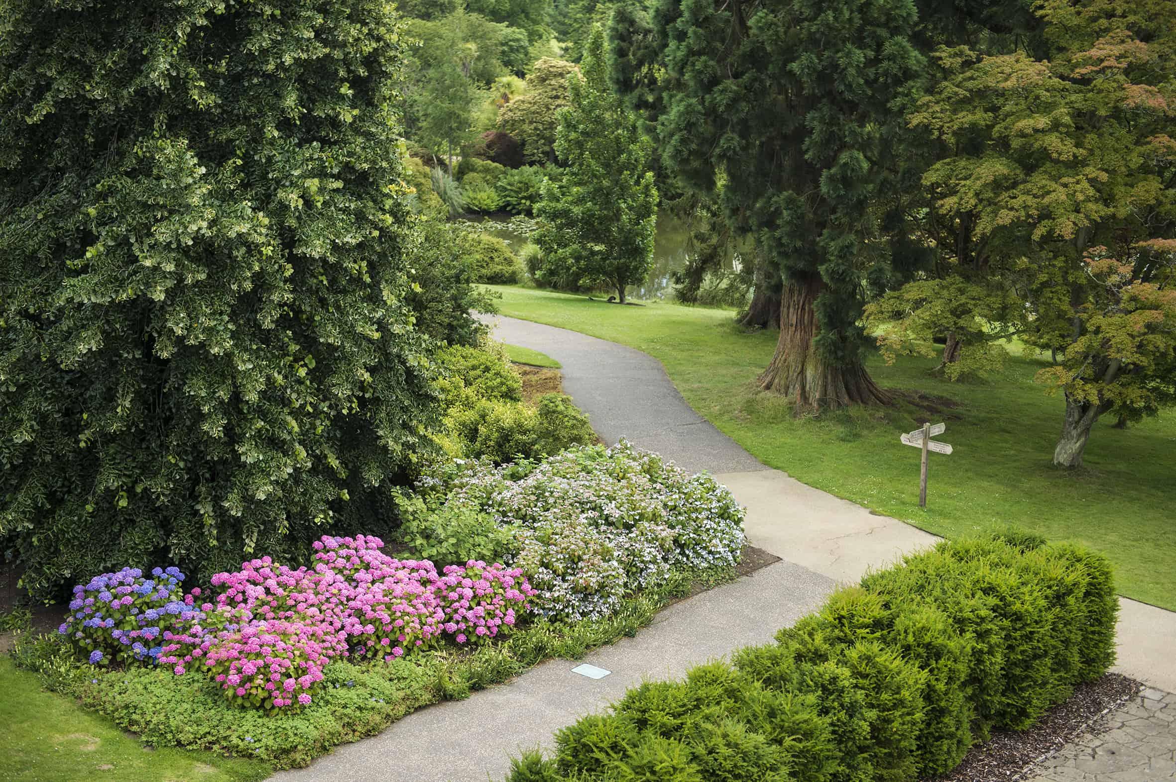 Kew Gardens West Sus Garden Ftempo
