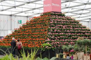 The plant pyramid 2-18