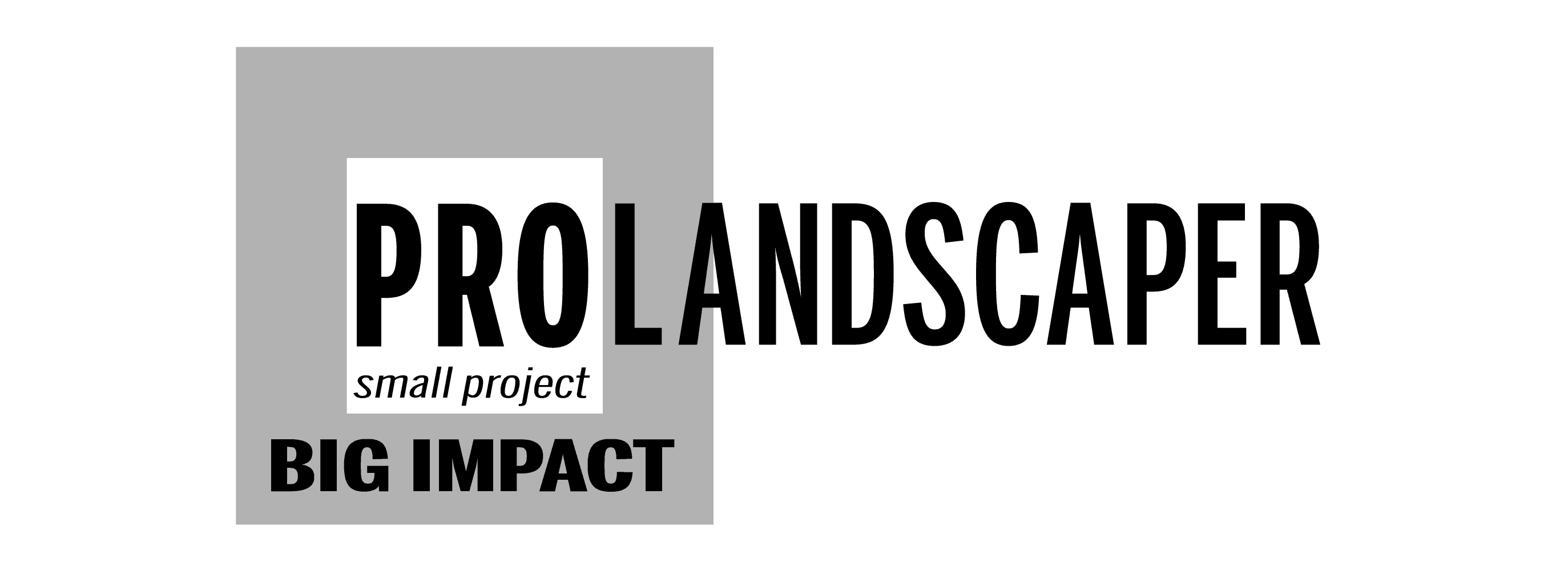 small project BIG IMPACT